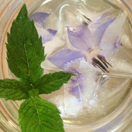borage and mint water